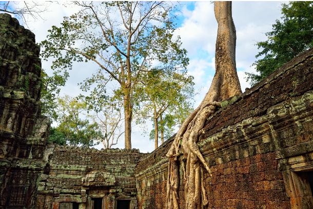 tempioditaprohm1