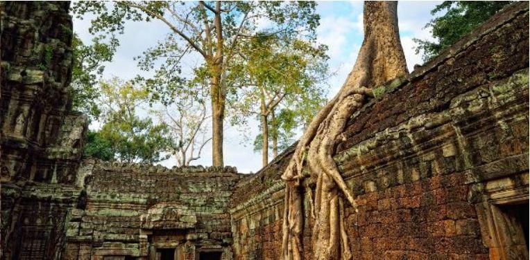 Guida viaggiatore Cambogia foto