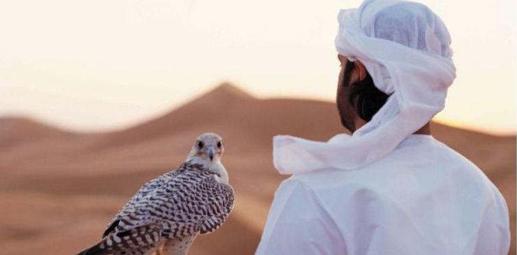 Guida viaggiatore Abu Dhabi foto