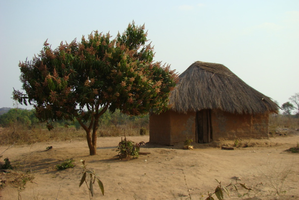 Kafulafuta