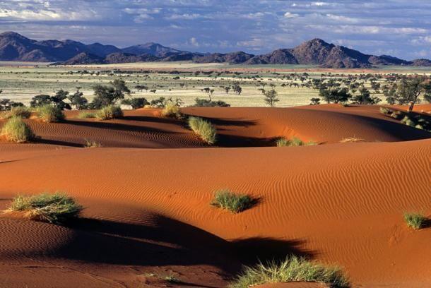 Desertsavan_namibia_gallery