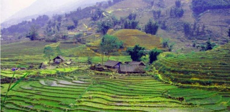 Guida viaggiatore Vietnam foto