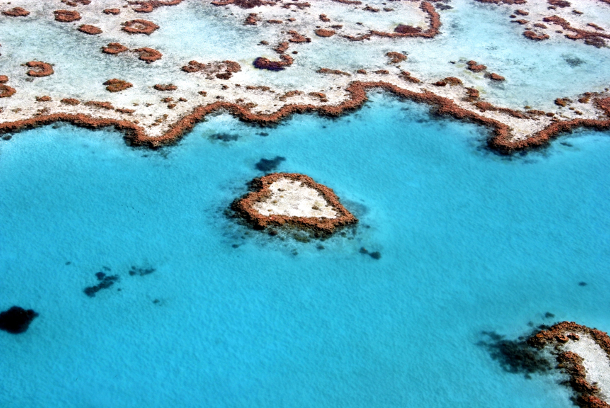 greatbarrierreef1