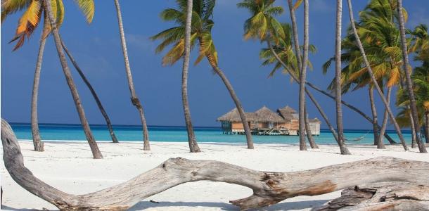 Guida viaggiatore Maldive foto
