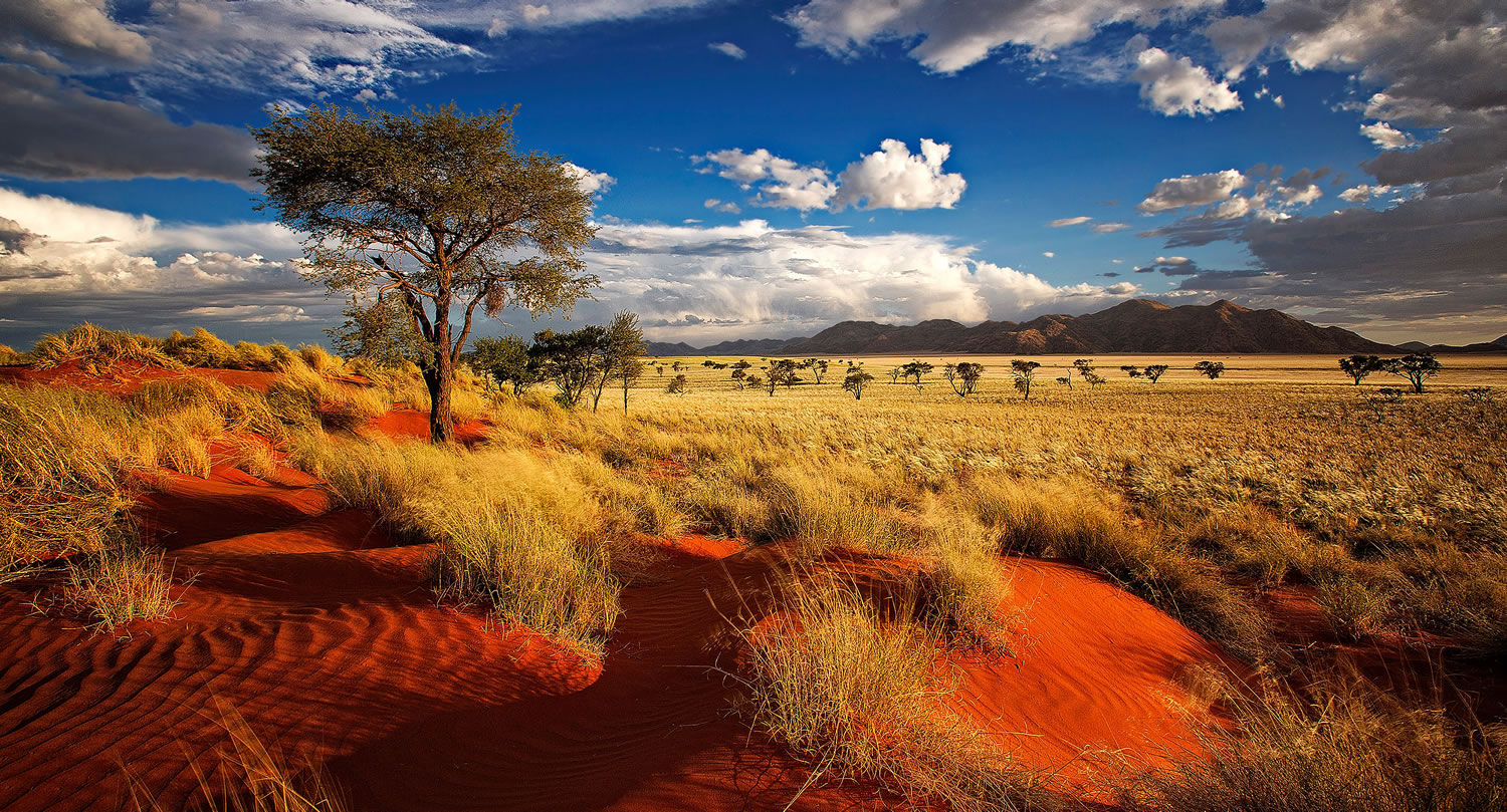 Africa Australe