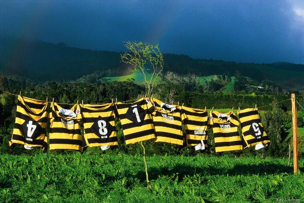 Rugby_NuovaZelanda