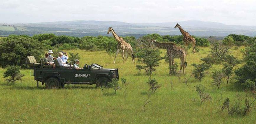 Sudafrica immagine