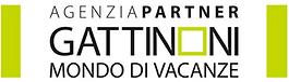 Logo Gattinoni Partner.png