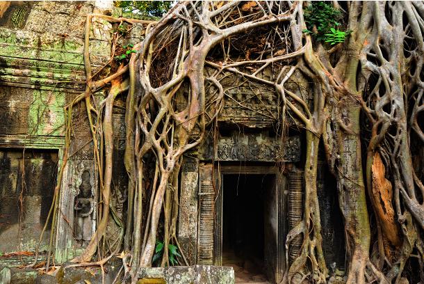 tempioditaprohm