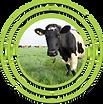 Logos Enicip 2021 3.png
