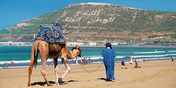 Agadir Camello en Playa