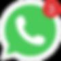 Modelo_Whatsapp_2018_f.png