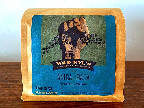 ANIBAL BACA, Honduras - Light Roast