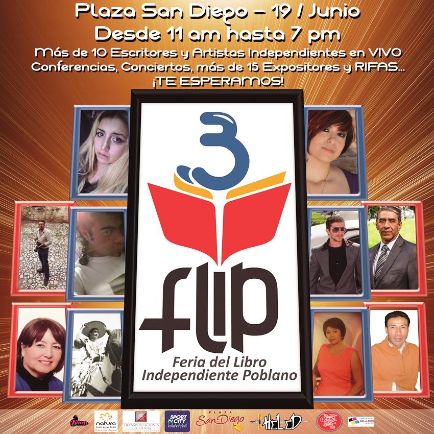 flip 6