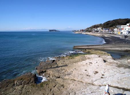 湘南からの海便り