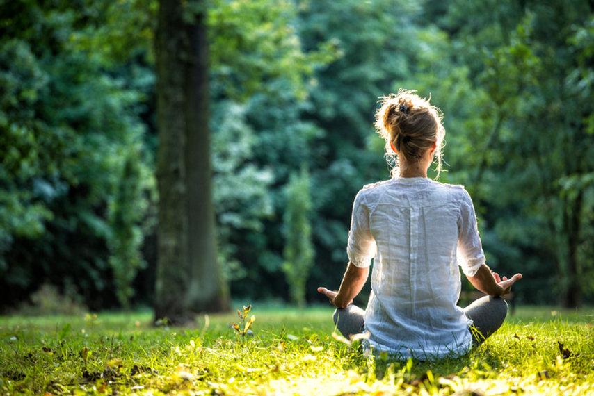 Forest Meditation.jpg