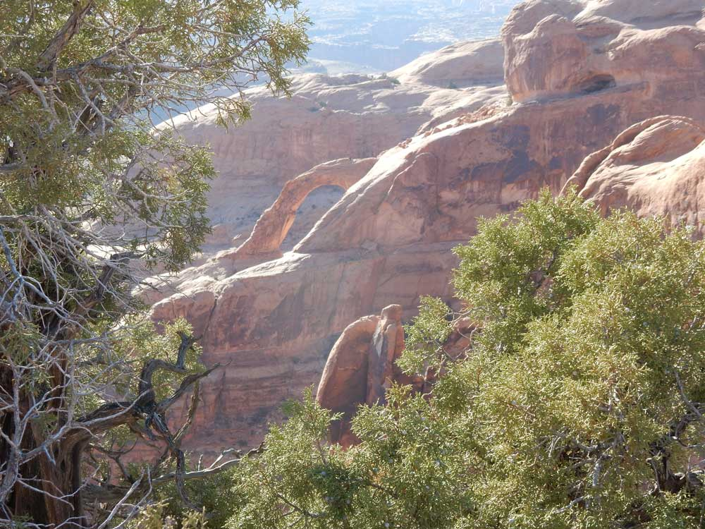 Arches near Moab