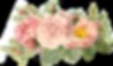 3757-main-logo_5ca59289a00576_81469367_e