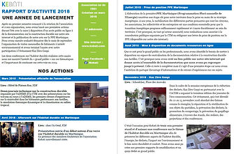 rapport activite p1.JPG