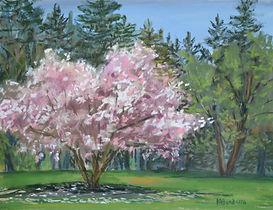 Spring Tree Magnolia Painting Bandarra