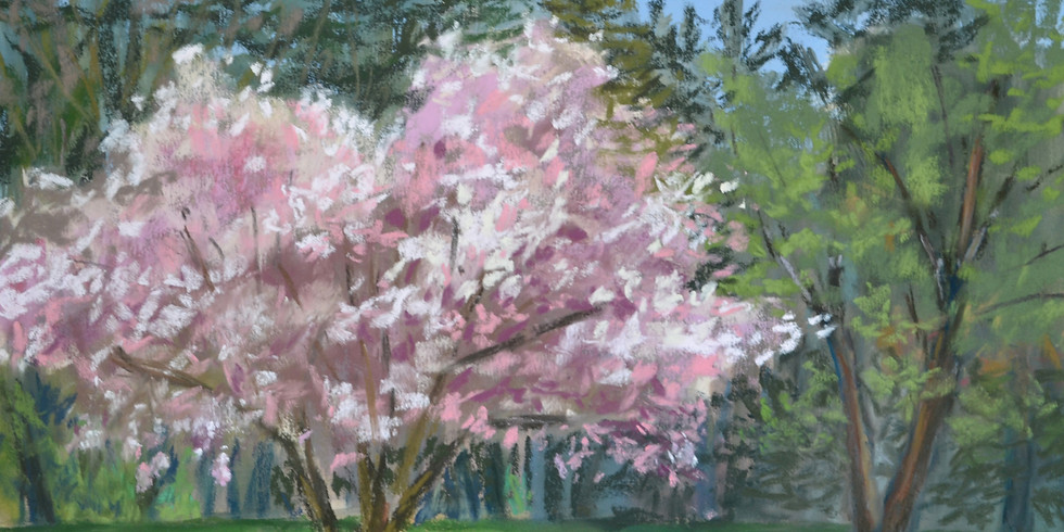 Spring Flowering Trees Workshop