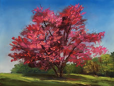 Painting of Redbud Tree