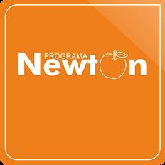 cuadro newton.png