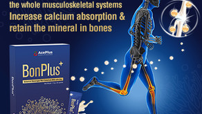 BonPlus takes care of the whole musculoskeletal systems