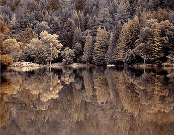 2. Loch Lomond.jpg