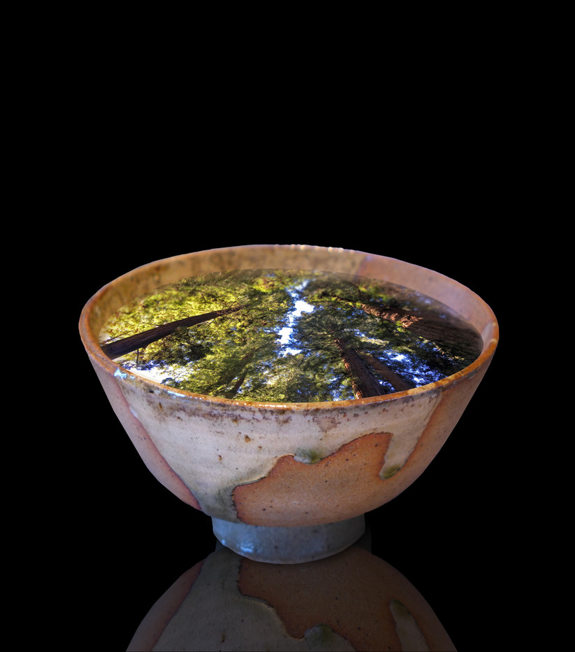 Redwoods in Bowl