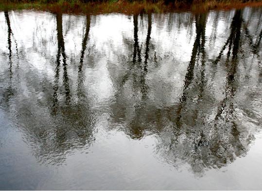 Czech Reflexions