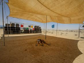נוהל בניית אוהלים וסככות הצללה (ציליות)