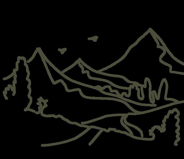 landscape design process survey & analysis