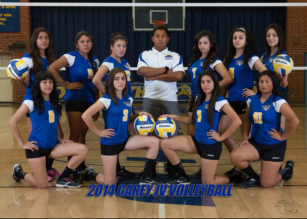 girls valleyball