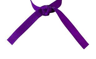 Tied Karate purple belt closeup isolated