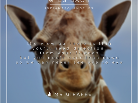 Here's a song that's not about a giraffe.