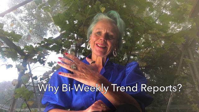 Bi-Weekly Reports & Signals