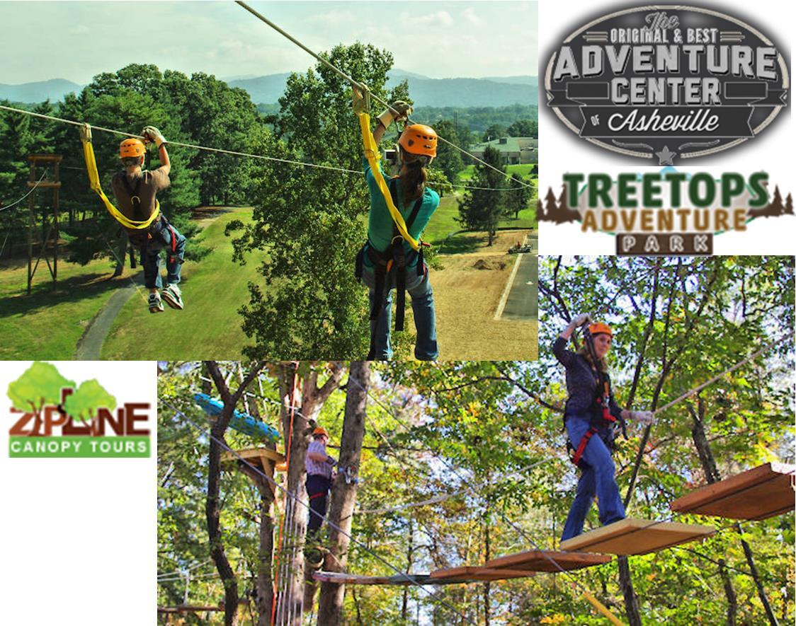 Treetop & Ziplining Adventures