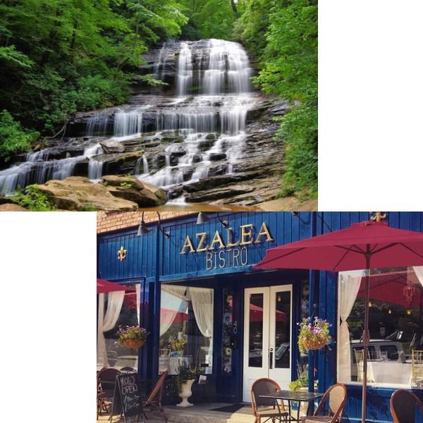 Pearsons Falls Tour & Azalea Bistro
