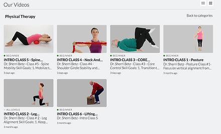 Video Library Screenshot1.jpg