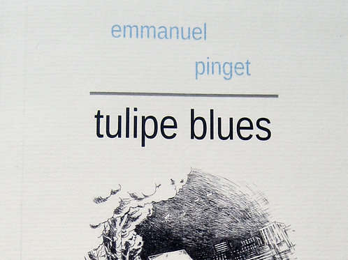 Tulipe blues
