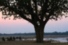 4-IBC-sunset-3.jpg