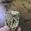 Thumbnail: Anthurium Warocqueanum Chonk