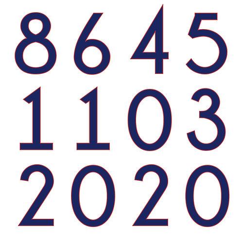 8645 Car Magnet