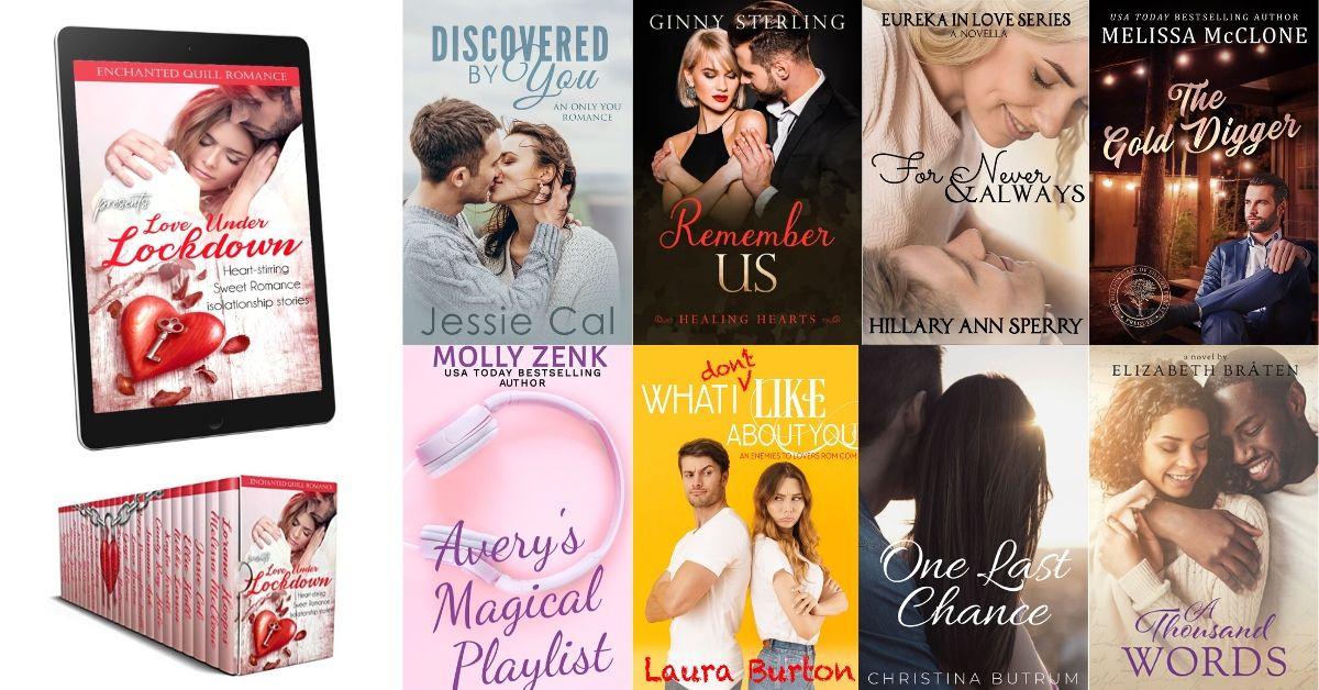 Love Under Lockdown Book Covers