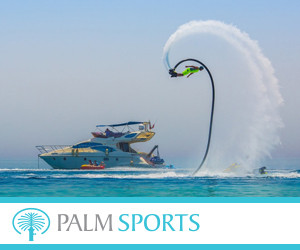 Palm Sports 300x250pix_banner.jpg
