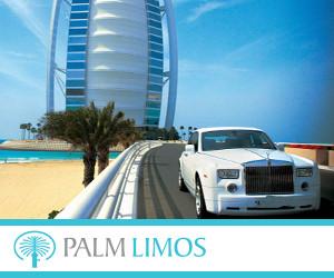 Palm Limos 300x250pix_banner.jpg