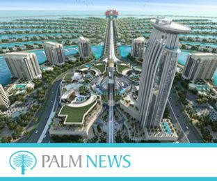 Palm News 300x250pix_banner.jpg