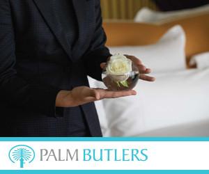 Palm Butlers 300x250pix_banner.jpg