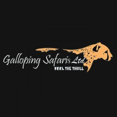 Galloping Safaris